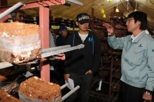 種菌メーカーの担当者とともに年末の出荷量確保に向けた管理を確認する部会員 (11月14日/横手市平鹿町で)