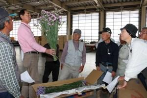 スターチスの出荷規格について確認する部会員